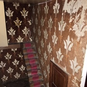 The only room with surviving wallpaper is the hall.